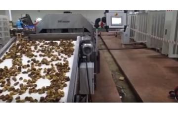 Microwave Food Dryer(Pasteurization-Fumigation)