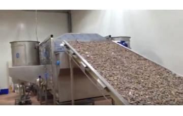 Dökme Gıdaların Mikrodalga ile Sterilizasyonu ve Fumigasyonu